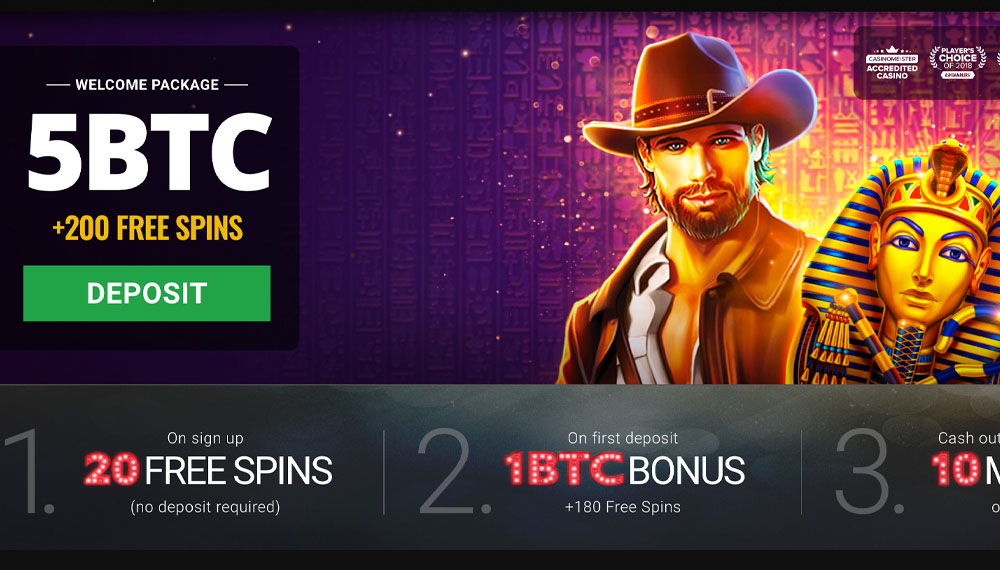 Clash of Pirates crypto slots CryptoWild Casino free spins